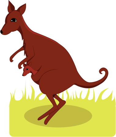 Kangaroo Island Clip Art, Vector Images & Illustrations.