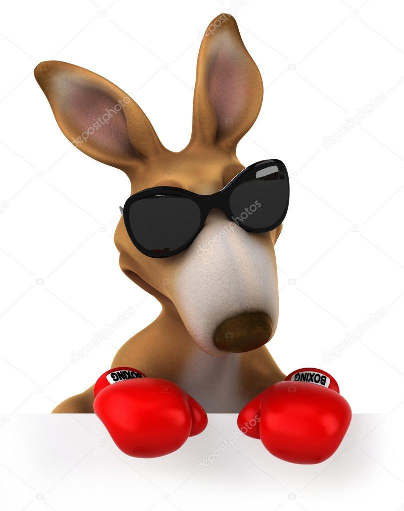 Kangaroo Boxing Gloves.