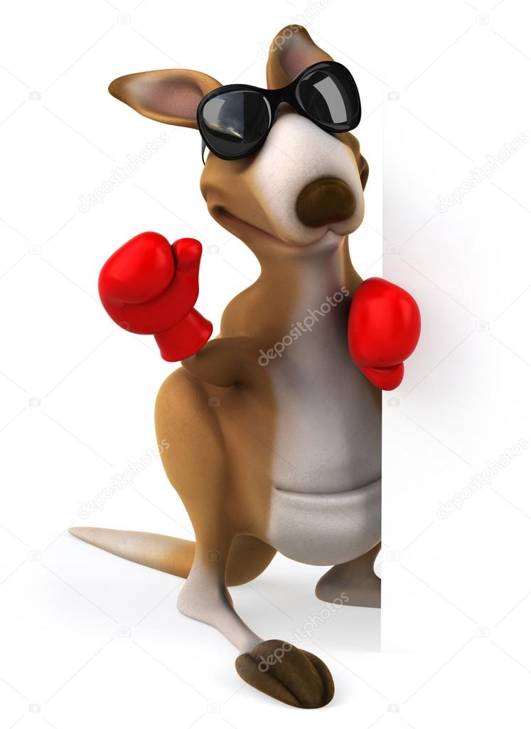 Kangaroo Boxing Gloves.