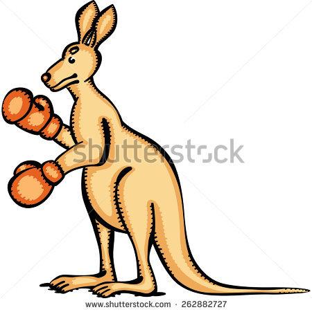 Kangaroo Cool Stock Photos, Images, & Pictures.