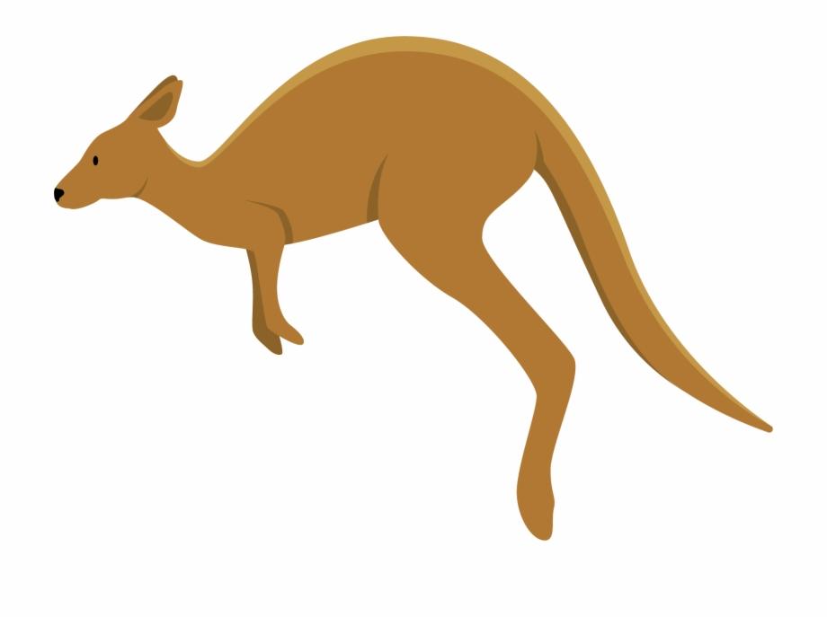 Kangaroo Png Transparent Quality Images.