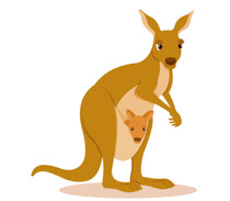 Free Kangaroo Clipart.