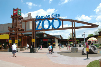1000+ ideas about City Zoo on Pinterest.