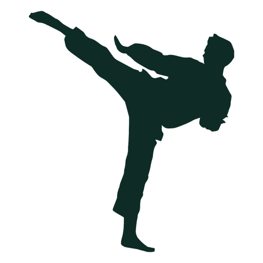 Karate high kick training.