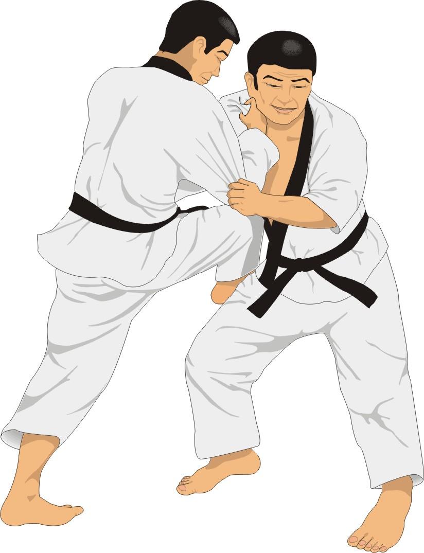 AIKF, AKF, WKF, KAD, IOA, IOC,Shito Ryu Seiko Kai Karate Do.