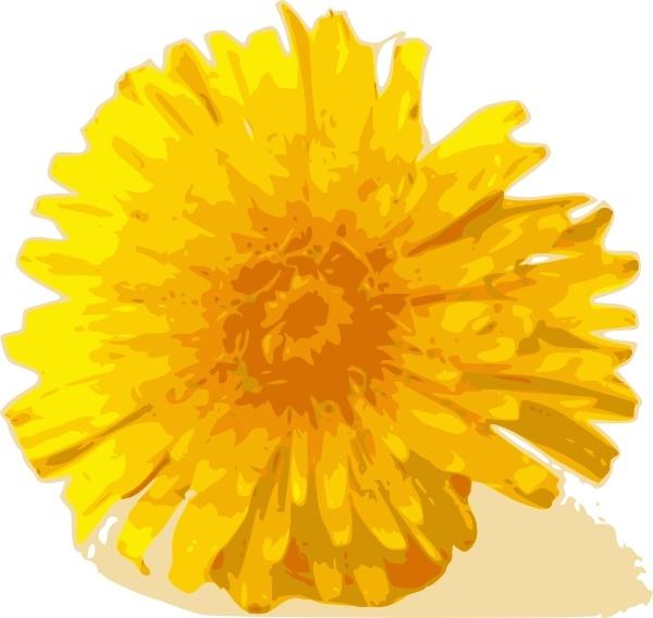 Dandelion clip art Free vector in Open office drawing svg ( .svg.