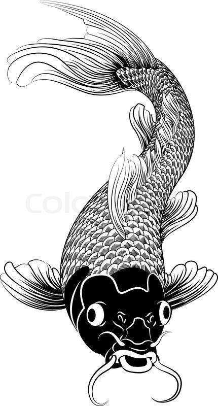 Kohaku Koi Karpfen Fisch Abbildung.