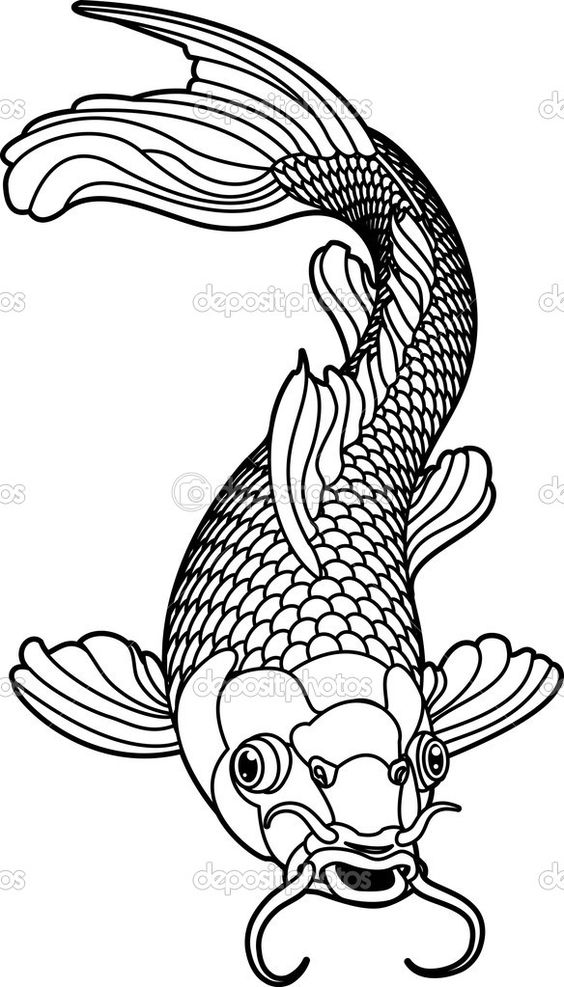 Koi Carp Detailed Coloring Page.