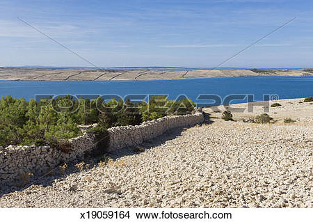 Stock Photo of Green trees in karst landscape, Pag x19059164.