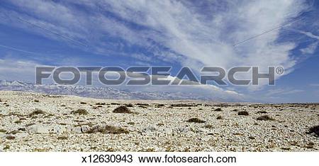 Stock Photo of Karst landscape, Vlasici, Pag, Croatia x12630943.