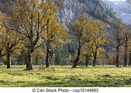 Stock Image of Ahornboden (Maple plain) valley in the Karwendel.
