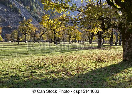 Stock Photos of Ahornboden (Maple plain) valley in the Karwendel.