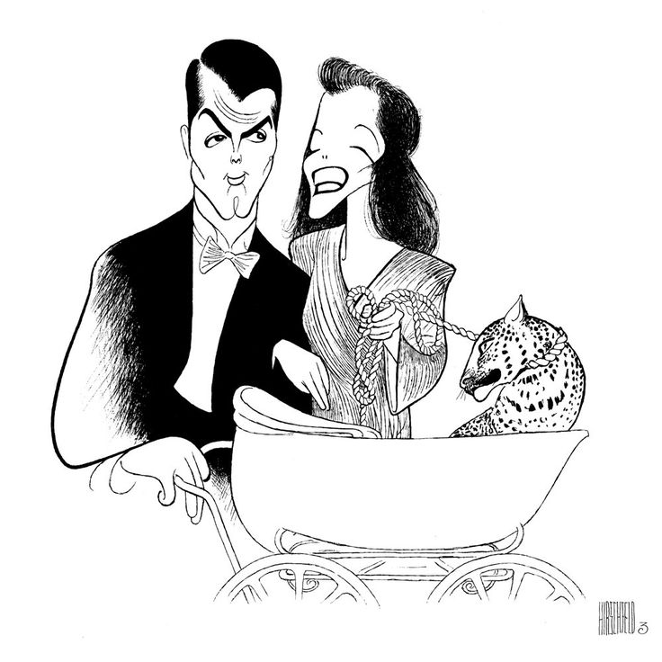 1000+ images about Hirschfeld.