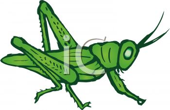 Picture of a Green Grasshopper In a Vector Clip Art Illustration.