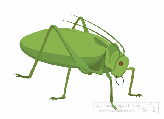 Insect Clipart : true.