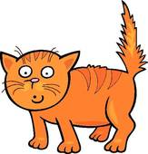 Frightened Kitten Clip Art.
