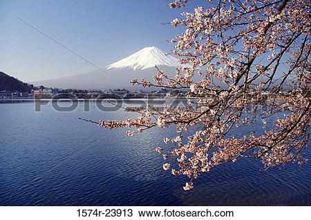Stock Photo of Lake in front of a mountain, Mount Fuji, Lake.