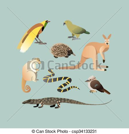Kea Clip Art and Stock Illustrations. 7 Kea EPS illustrations and.