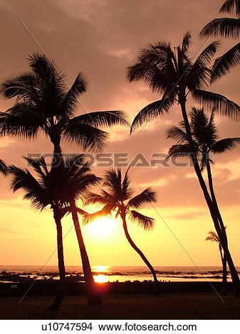 Stock Photo of Keauhou, Big Island, Island of Hawaii, HI, Hawaii.