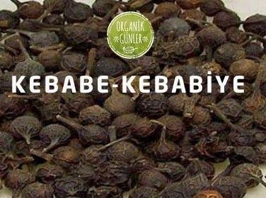 Ses Kısıklığı Otu Kebabe.