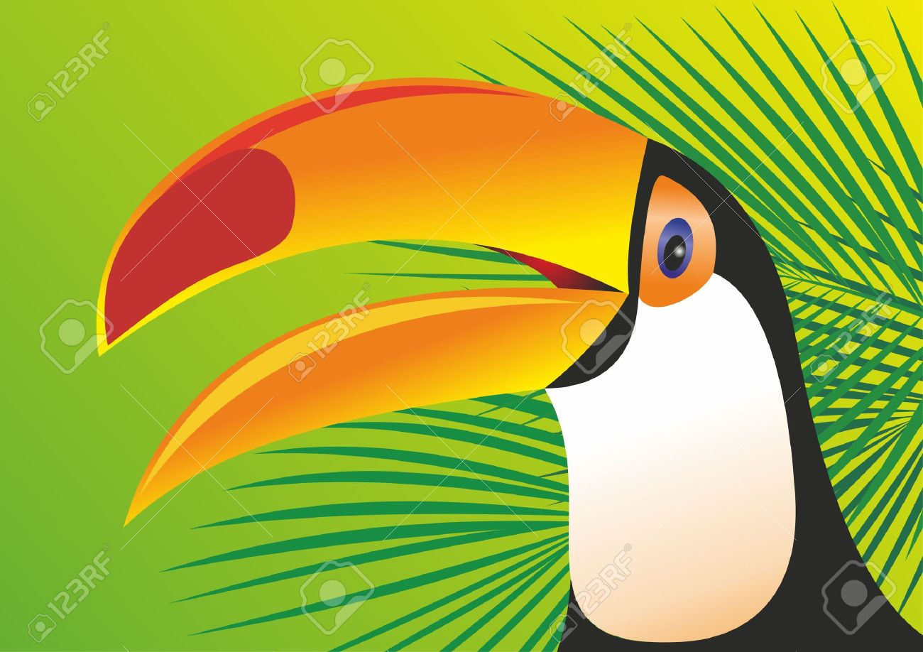 Keel Billed Toucan Royalty Free Cliparts, Vectors, And Stock.