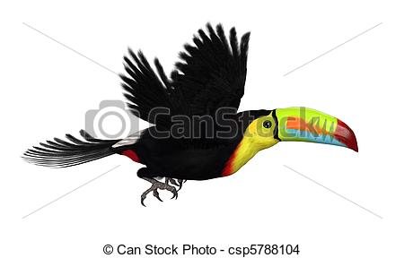 Keel Illustrations and Clip Art. 427 Keel royalty free.