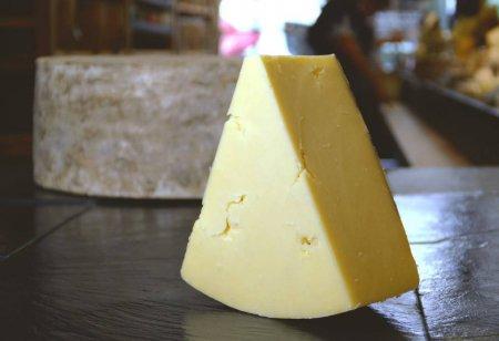 Cheese Powders (@CheesePowders).
