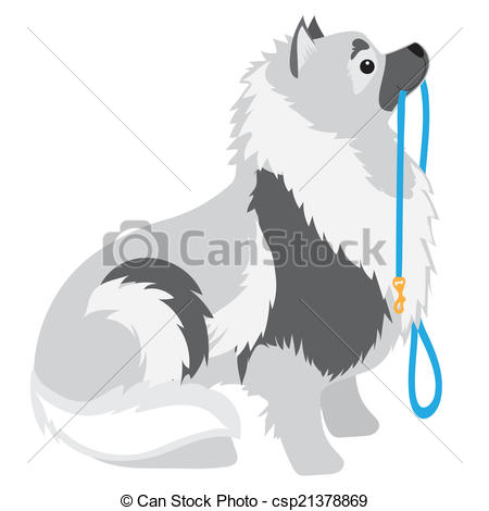 Clip Art Vector of Keeshond Leash.