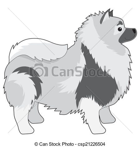 Keeshond Illustrations and Clip Art. 4 Keeshond royalty free.