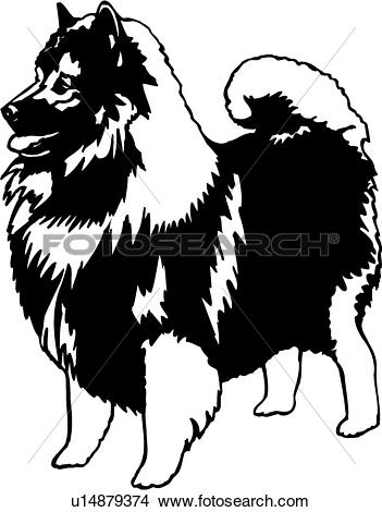 Clipart of , animal, breeds, canine, dog, keeshond, show dog.