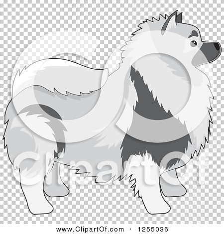 Clipart of a Cute Keeshond Dog in Profile.