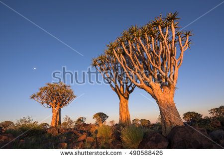 Keetmanshoop Stock Photos, Royalty.