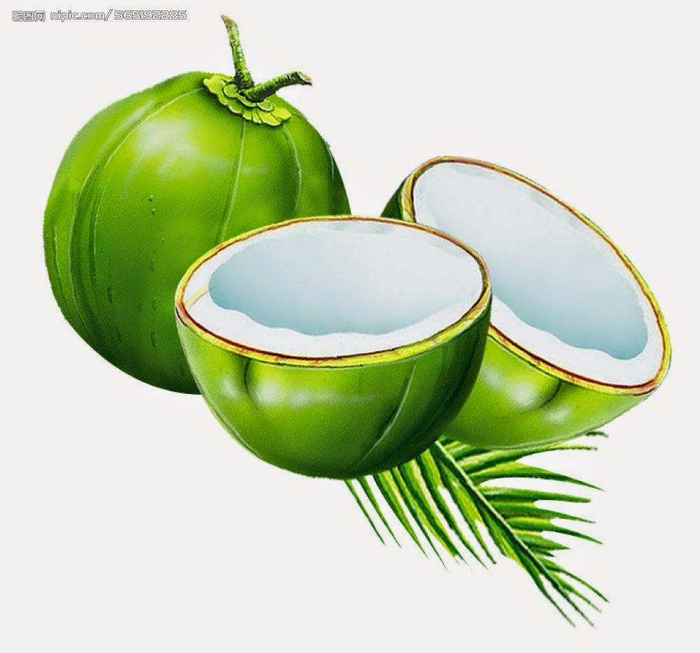 Kelapa Muda Sempoi: khasiat kelapa.