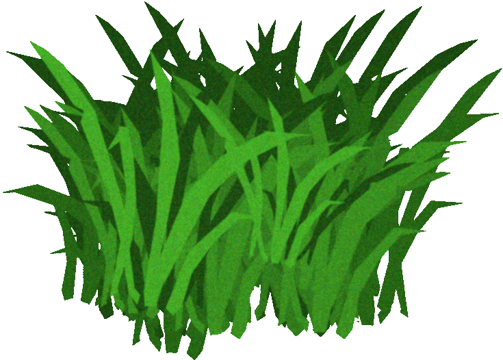 Gallery For > Clipart of Sea Kelp.