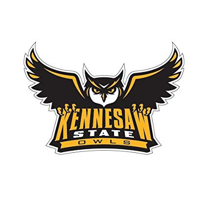Amazon.com : CollegeFanGear Kennesaw Small Decal \'Official.
