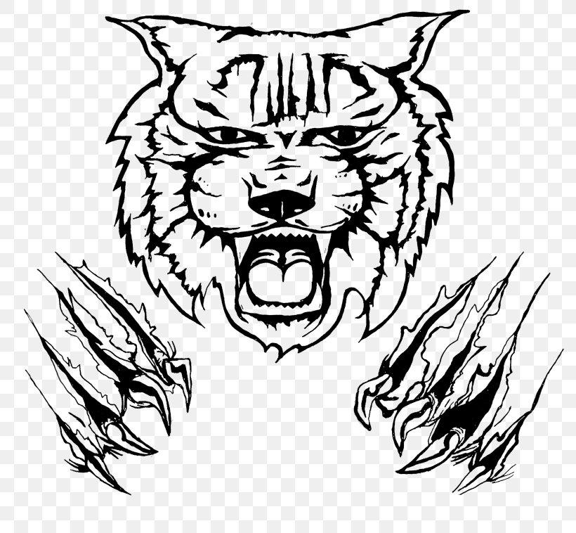 Kentucky Wildcats Football Logo Clip Art, PNG, 800x758px.