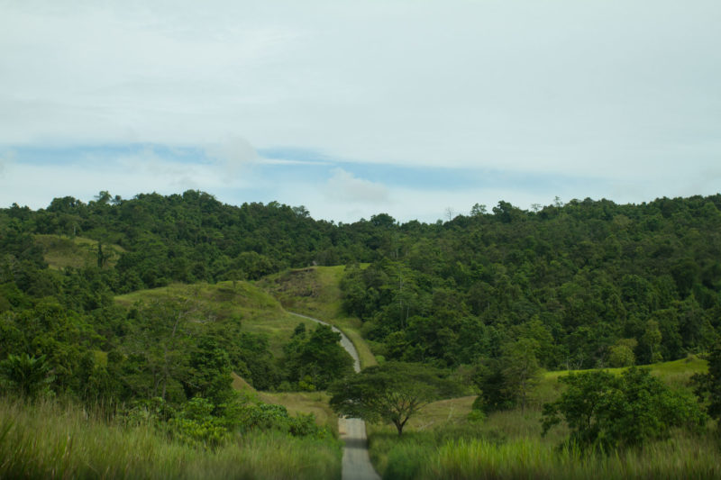 Road trip to Kerema: Off the beaten track in Papua New Guinea.