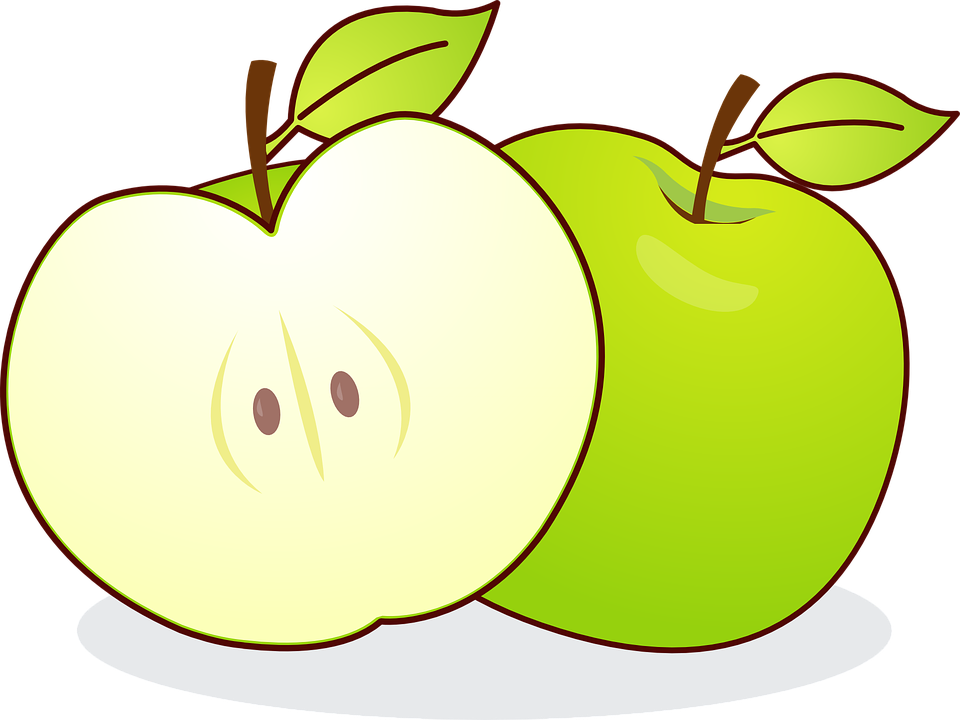 Free vector graphic: Apple, Malus, Kernobstgewaechs.