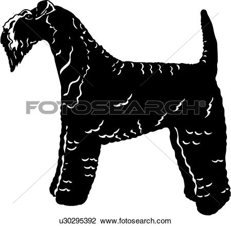 Clipart of , animal, breeds, canine, dog, kerry blue terrier, show.
