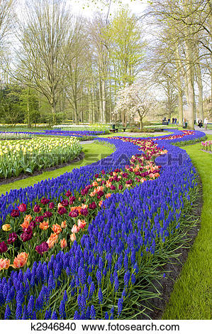 Stock Photography of Keukenhof Gardens, Lisse, Netherlands.