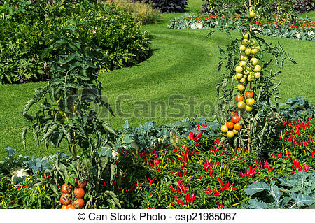 Stock Image of Vegetable display outside the Palm House at Kew.