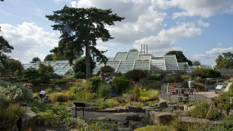 Kew Gardens Tickets 2FOR1 Offers.