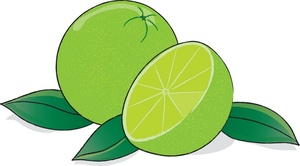 Key lime clipart.