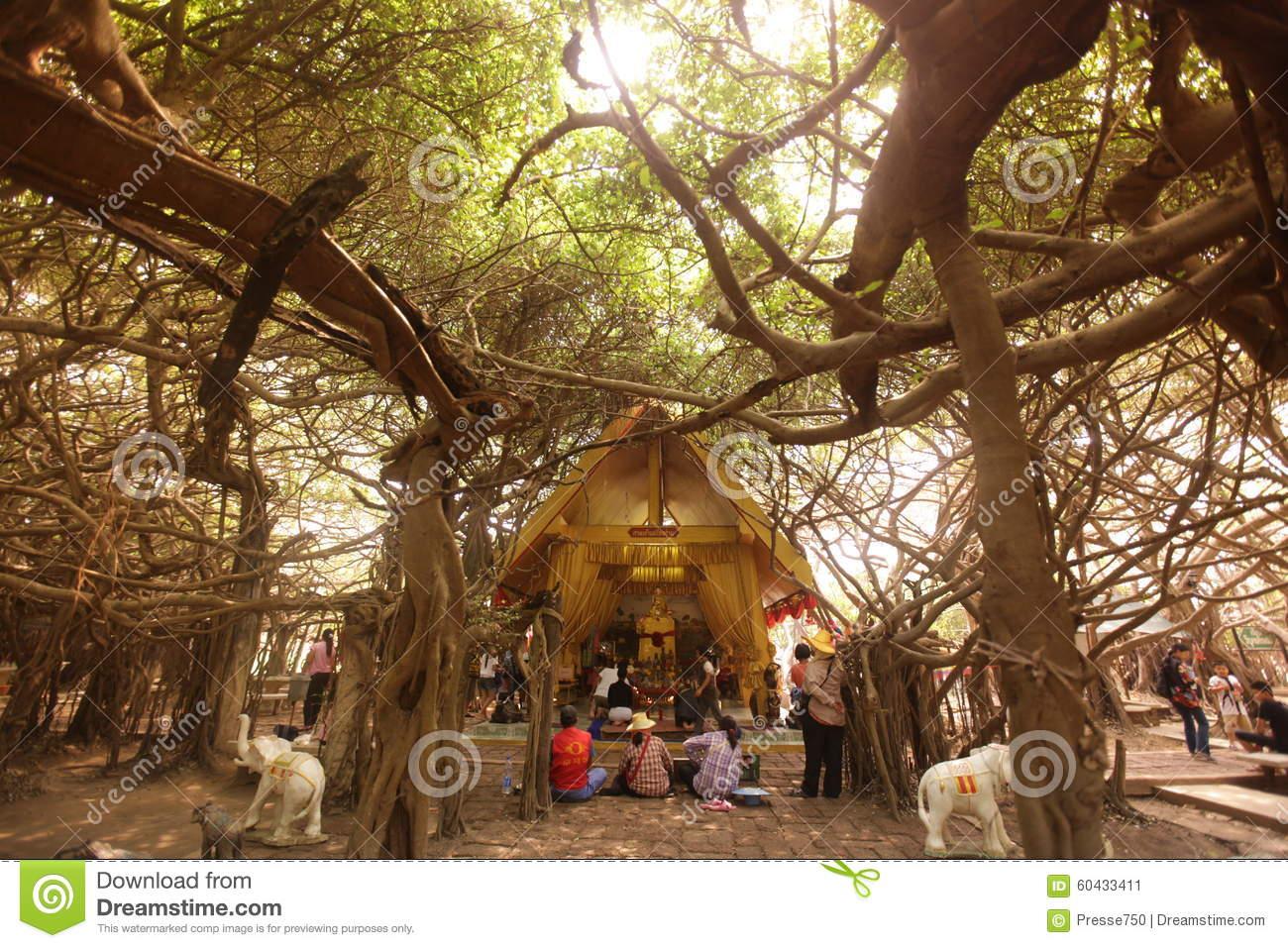 ASIA THAILAND ISAN KHORAT PHIMAI SAI NGAM Editorial Photo.