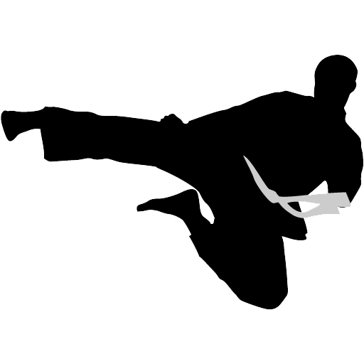 Karate Kick PNG Free Download.