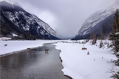 Parks Canada.