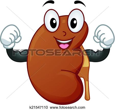 Kidney Clip Art Illustrations. 3,063 kidney clipart EPS vector.