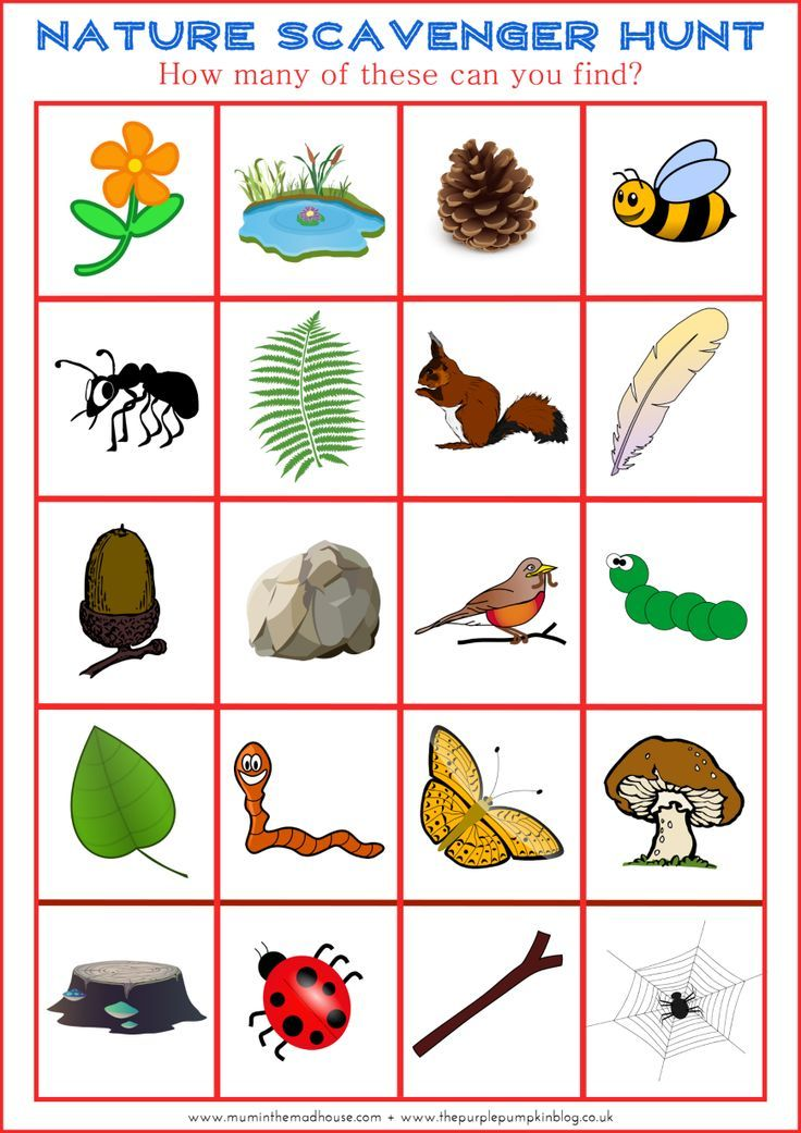 166 Best images about Nature For Kids on Pinterest.