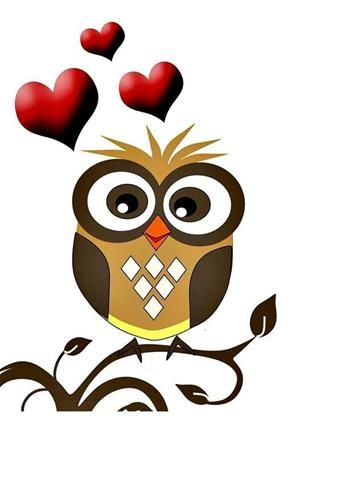 1000+ Bilder zu owls auf Pinterest.