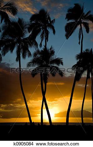 Stock Photo of Kihei Sunset k0905084.